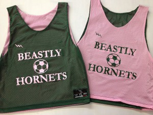 beastly hornets pinnies